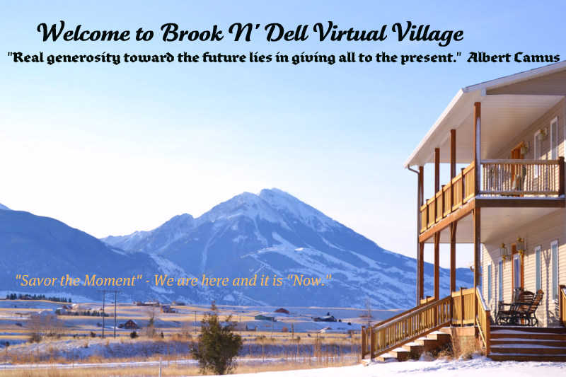 Brook N' Dell Virtual Village